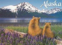 Alaszkai nemzeti parkok, végtelen jégmezők