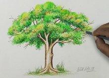 Szakszerű önismereti rajzteszt a Relax- Állj Academy jóvoltából