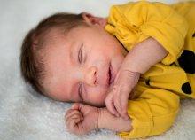 1 órás gyermek- vagy babafotózás Budapesten, otthonodban vagy szabadtéren a Marton Balázs Photography-tól