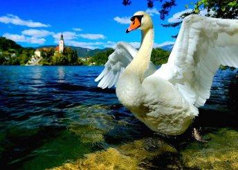 Őszi-téli kirándulás a mesés Bledi-tóhoz