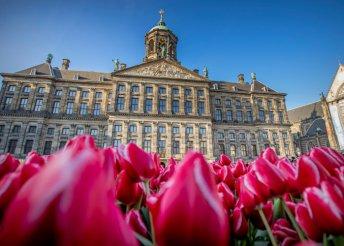 Körutazás Hollandiában, látogatás a Tulipán showra, 4 éjszaka Hollandiában önellátással, buszos utazással