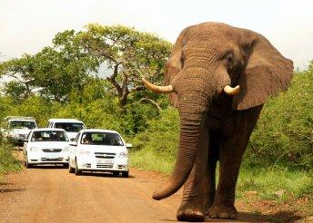 11 napos utazás Dél-Afrikában, repülőjeggyel, helyi busszal, reggelivel, belépőkkel, idegenvezetéssel