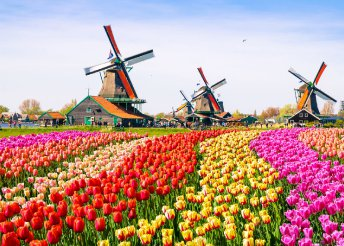 7 napos körút tulipánvirágzáskor Hollandiában, Belgiumban, reggelivel, busszal, idegenvezetéssel