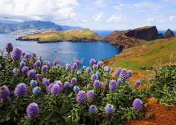 8 nap Madeirán, repülőjeggyel, helyi busszal, reggelivel, idegenvezetéssel – Atlanti-óceán, Portugália
