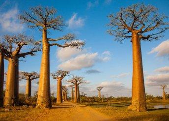 13 napos körutazás Madagaszkáron, félpanzióval, programokkal, idegenvezetéssel