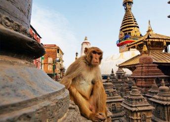 13 nap Indiában és Nepálban, repülővel, helyi busszal, félpanzióval, idegenvezetéssel