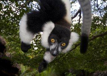 Szilveszteri kalandozás Madagaszkáron, 9 éjszaka szállás 3-4*-os szállodákban, félpanzióval