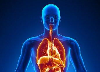 Teljes endokrin rendszer felmérés
