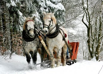 5 napos téli kirándulás Erdélyben buszos utazással, szállás Tusnádfürdőn panzióban félpanzióval