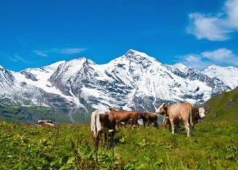 6 napos alpesi kirándulás a Salzkammerguti-tóvidéktől a Grossglocknerig, reggelivel, 3*-os szállással