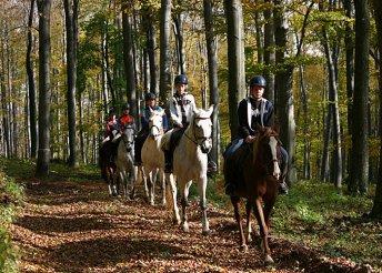 3 nap 2 személyre a Gerecse lábánál, a csolnoki Pollushof Panzióban, reggelivel, lovaglással