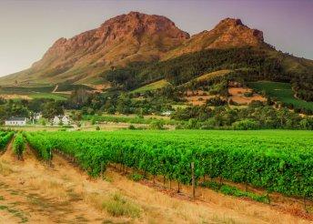 12 napos bortúra Dél-Afrikában, repülőjeggyel, illetékkel, 4*-os szállásokkal