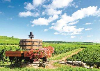 6 napos körutazás Franciaországban, Burgundia és Elzász vidékén, buszos utazással és reggelivel