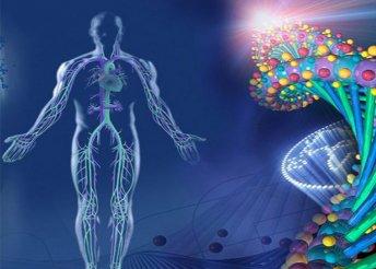 Vitamin- és ásványianyag-vizsgálat, felszívódási képesség, sav-lúg egyensúly, nehézfém-telítettség felmérés