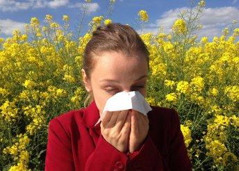 Allergiavizsgálat 64 anyagra, immunrendszer- és Candida-vizsgálat kiértékeléssel