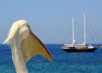 8 napos nyaralás Görögországban, az Olymposzi Riviérán, buszos utazással, félpanzióval