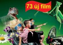 5D mozi a Dreamlandban 1 vagy 2 személyre